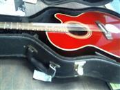 TAKAMINE Electric-Acoustic Guitar EG540C